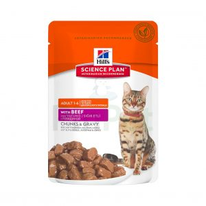 hills cats feline adult with beef min